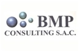 Bmp Consulting